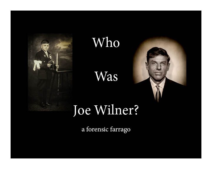 Who Was Joe Wilner? cover